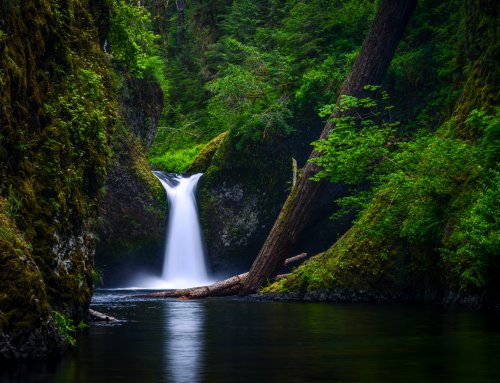 Spring Waterfall Chasing: Local's Guide to My Top 10 Favorite Waterfalls in Oregon