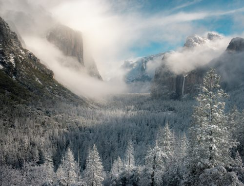 Winter Road Trip Adventures in the National Parks of California – Yosemite, Sequoia, & Death Valley