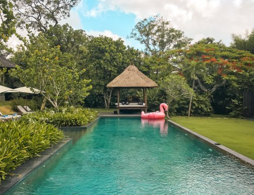 10 Days to Become a Social Media Boss?! – My Experience with the Institute of Code's Bali Bootcamp